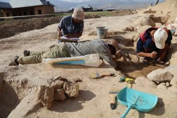 西北大学中亚考古队30年追寻大月氏